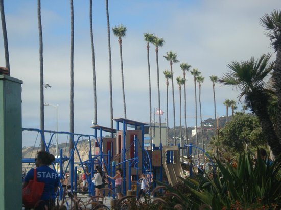 La Jolla Shores Park: juegos, palmeras y playa!