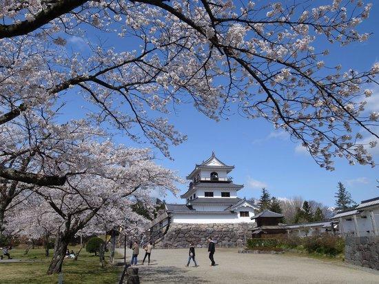 Shiroishi, Japan: 本丸から見た天守台