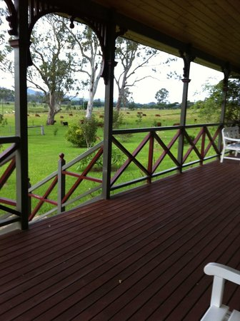 Feathers Home Stay: The outlook