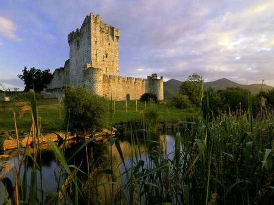 Arbutus Hotel: Ross castle