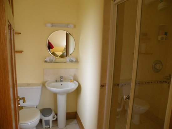 Bunratty Haven Bed and Breakfast: bathroom