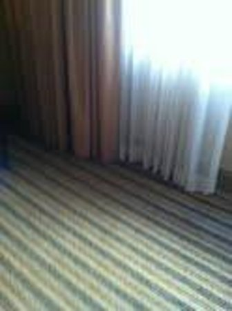 Hilton Parsippany: Drab, outdated and depressing decor