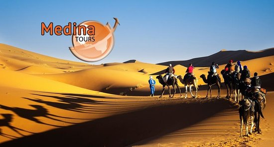 Medinatours Tours - Day Tours