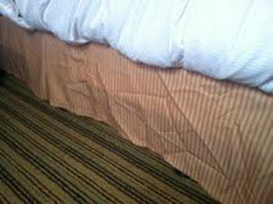 Hilton Parsippany: Dust ruffle on bed...lazy housekeeper evidently