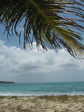 360 Vieques: Beach