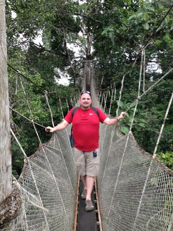 Amazon Explorama Lodges: Canopy Walk at ExplorNapo Lodge