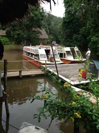 Amazon Explorama Lodges: Lodge boats to transport between lodges and some excursions