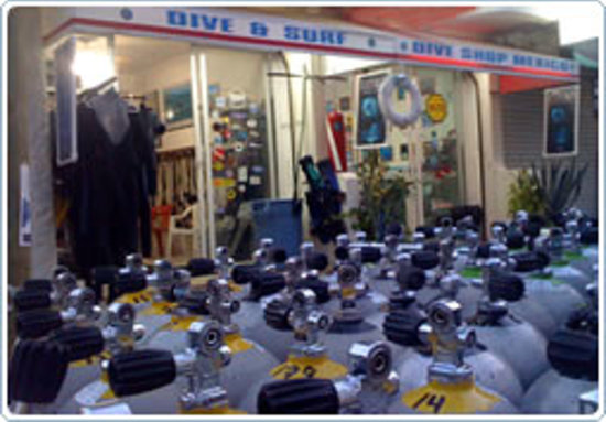 Dive shop mexico playa del carmen lo que se debe saber - Dive shop mexico ...