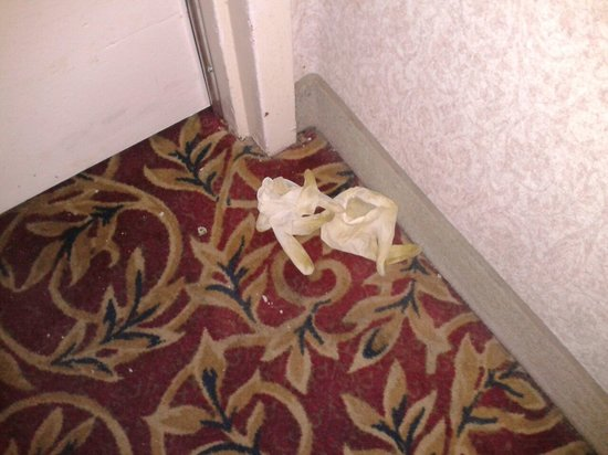 Howard Johnson Fullerton Anaheim Hotel and Conference Center: THIS MAKES ME SICK..USED RUBBER GLOVES SAT OUTSIDE OUR ROOM DOOR FOR 3 DAYS..WHO KNOWS WHERE THE