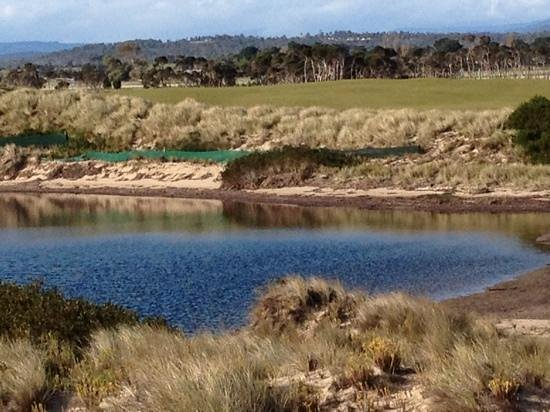 Barnbougle Dunes: no need to worry
