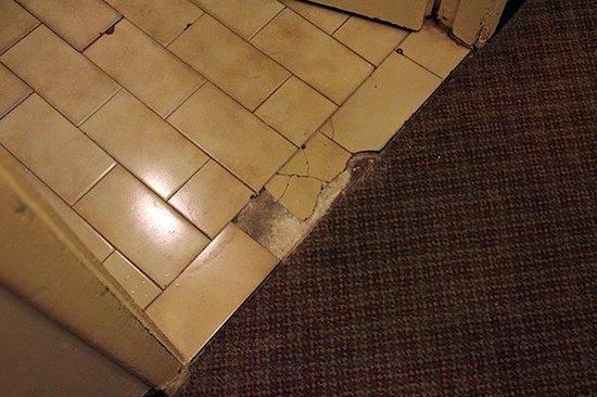 Hotel Central Cordoba: Our bathroom floor.