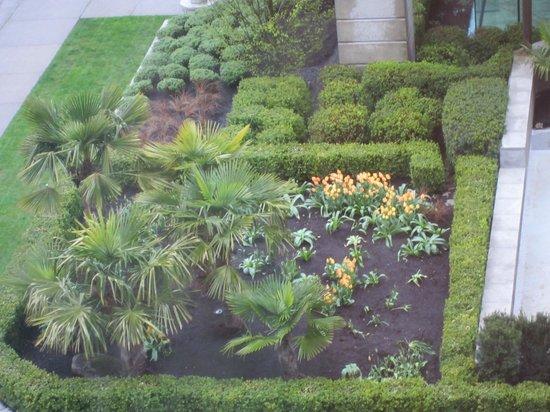 Sylvia Hotel: Garden gazing!