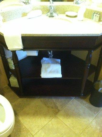 Hampton Inn Evansville: Lots of storage under the sink in the bathroom