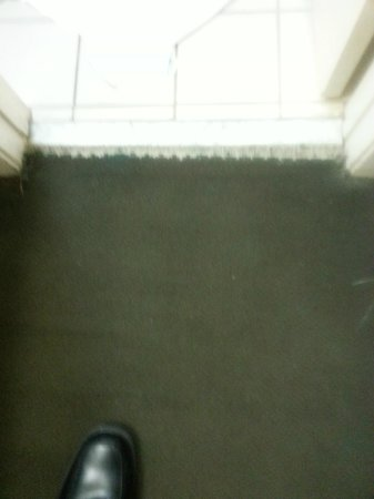 Motel 6 Raleigh North: Carpet torn and missing