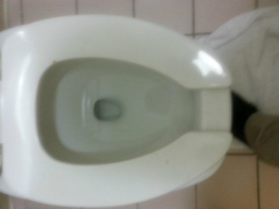 Motel 6 Raleigh North: Dirty toliet seat