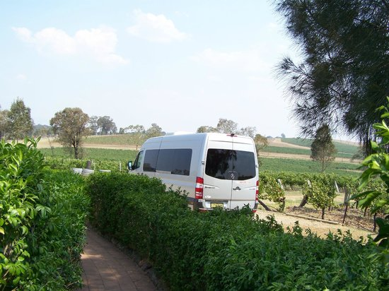 Hunter Valley Wine Tasting Tours : tour mini van