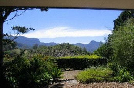 Hillcrest Mountain View Retreat: view from cottage lounge/verandah to springbrook and the cougals