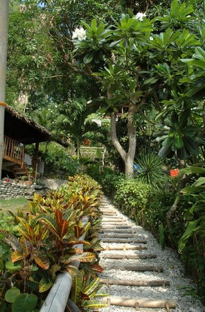 Bamboo Beach Resort: This way to paradise...