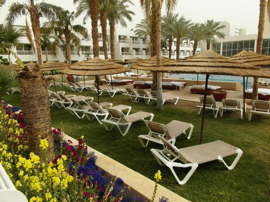 Leonardo Royal Resort Hotel Eilat : Зона бассейна