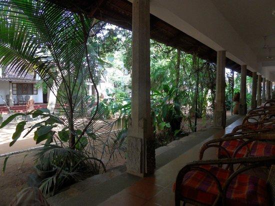 Fort House: le jardin