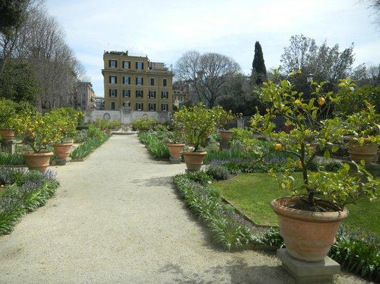 Tarif Jardin Villa Borghese