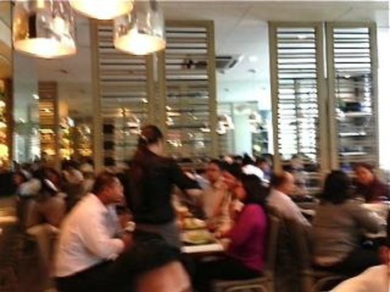 Relish at Ponte: busy restaurant