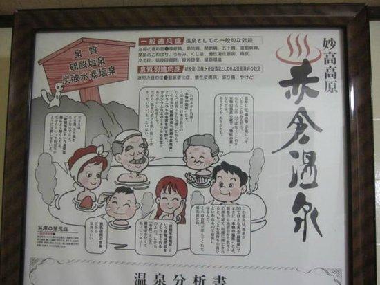 Matsuya Ryokan: 赤倉温泉の能書き