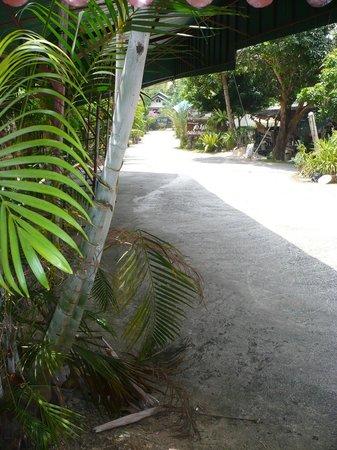 Chandee Guesthouse: vue de la chambre