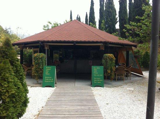 Cafeteria jardin botanico la concepcion m laga for Restaurante jardin botanico