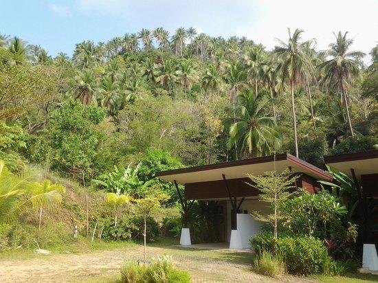 Siva Buri Resort: chambre du Siva Buri.