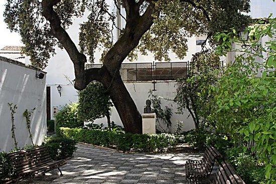 House Museum of Niceto Alcala: Patio del museo con busto