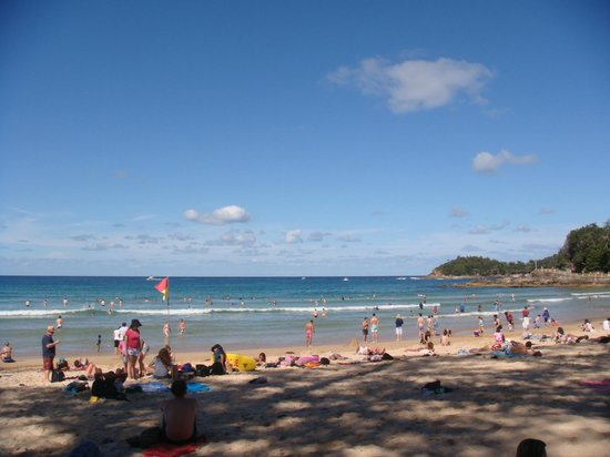 Manly Bike Tours and Bike Hire : A great beach