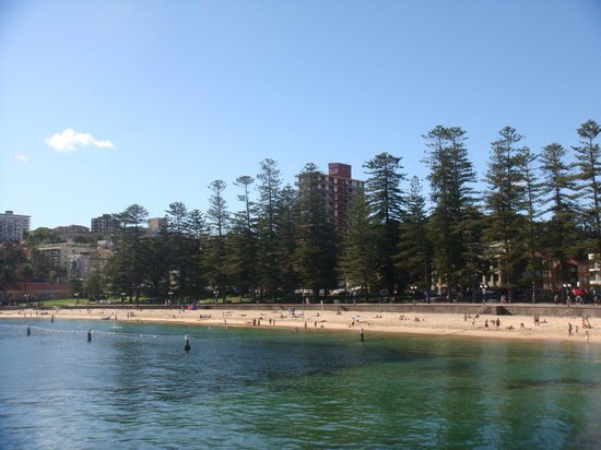 Manly Bike Tours and Bike Hire: Another great beach