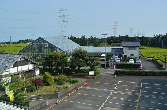 Gurinpia Makinohara: 製茶工場からの眺め