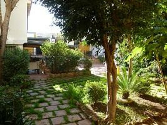 Villa Albero: Courtyard from the room 1