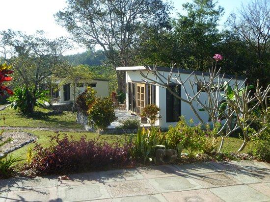 GumboLimbo Jungle Resort: in lovely gardens