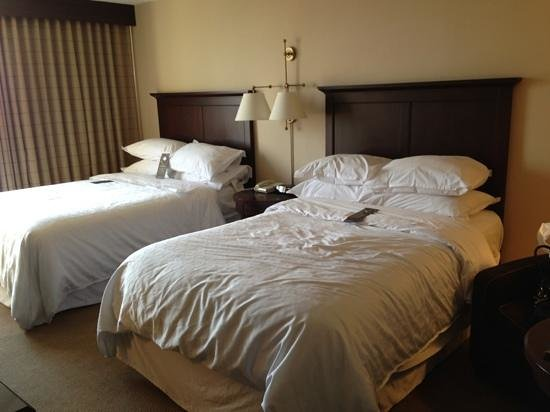 Sheraton Philadelphia University City Hotel: beds in room