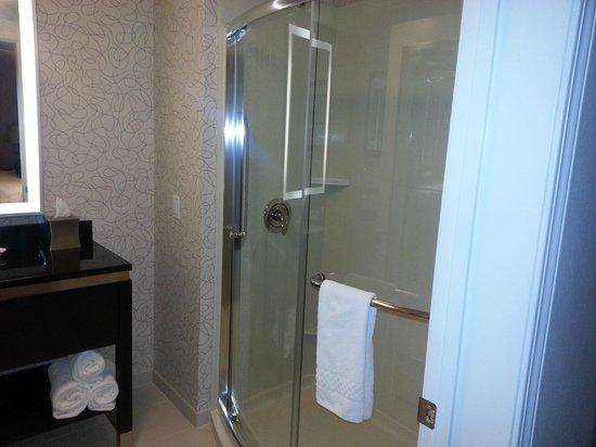 Residence Inn Boston Logan Airport/Chelsea: shower