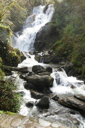 Killarney, Irlanda: Torc Falls