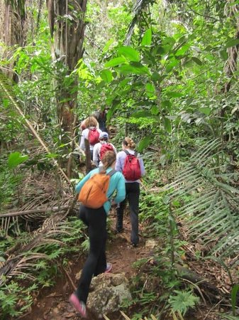 Belize Jungle Dome : Walking through the Jungle to the Black Hole Drop.