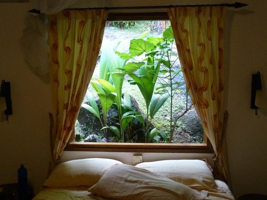 Cote Sud: fenêtre chambre