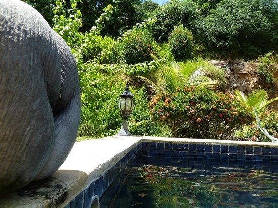 Cote Sud : piscine