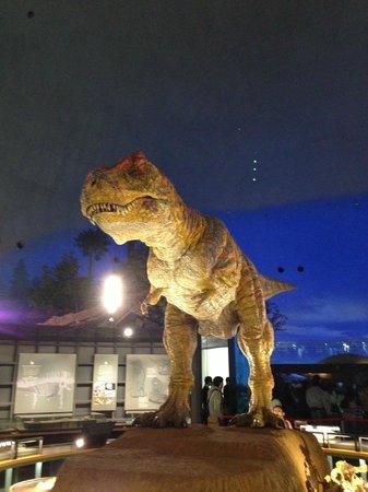 Katsuyama, Japón: リアル模型恐竜