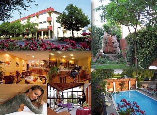 Hotel Terme Belvedere: home