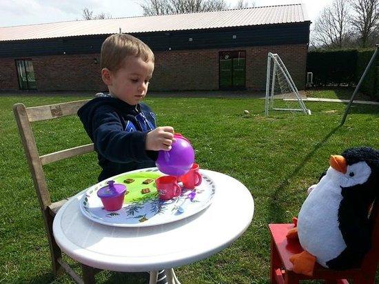 Bucks Farm Holiday Cottages: Tea party at Bucks Farm