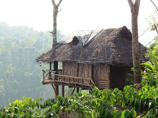 Aranyakam Homestay: Tree House Overlooking Gorge