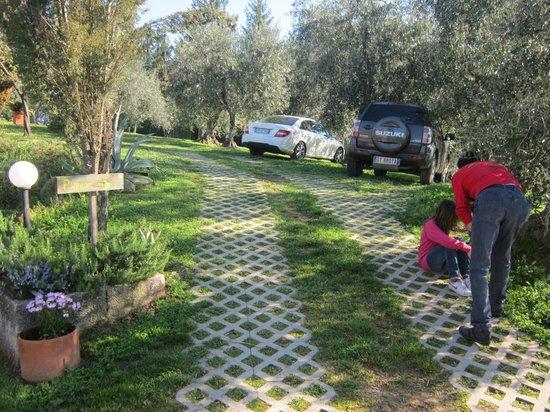 Podere Fioretto : parking
