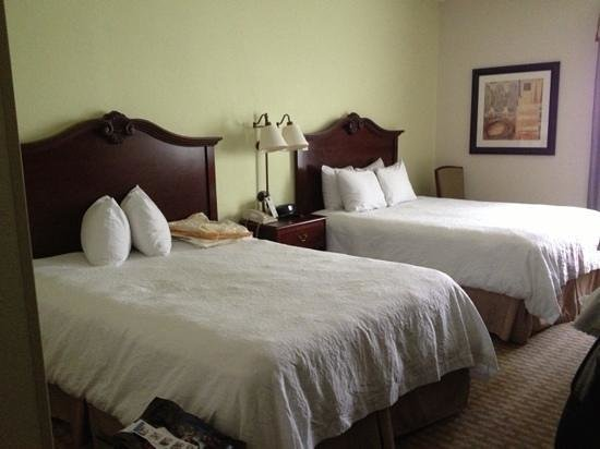 Hampton Inn Orlando/Lake Buena Vista: beds