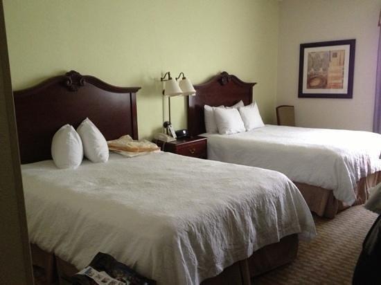 هامبتون إن أورلاندو ليك بوينا فيستا: beds