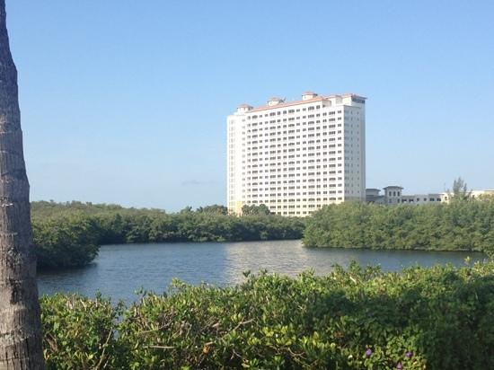 The Westin Cape Coral Resort At Marina Village: view from entrance westin hotel